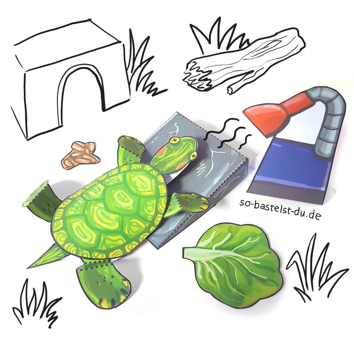 Schildkröte basteln Papier