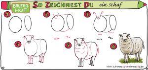 So-zeichnest-du-ein-Schaf